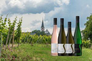 Weingut Schreiber Hochheim | Schreibers Weine | Riesling, Spätburgunder