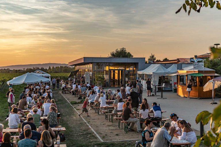 Weingut Schreiber Hochheim |Vintothek als Eventlocation buchen